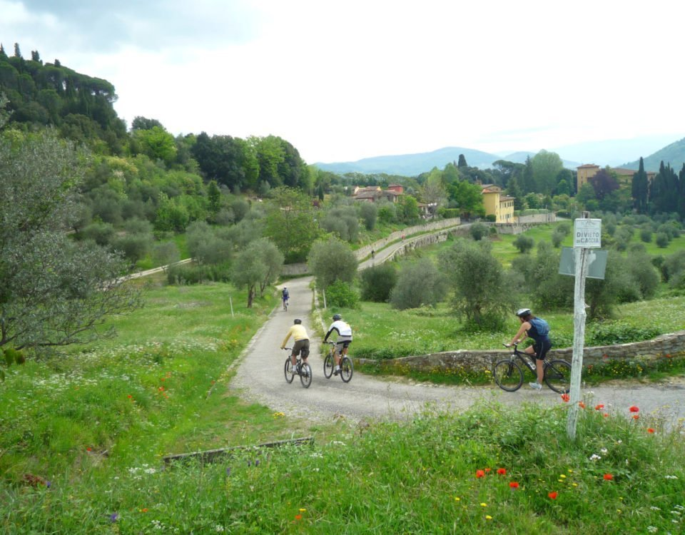 Fiesole hills bike tour
